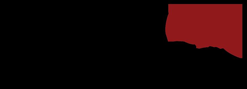 logo-A1-800